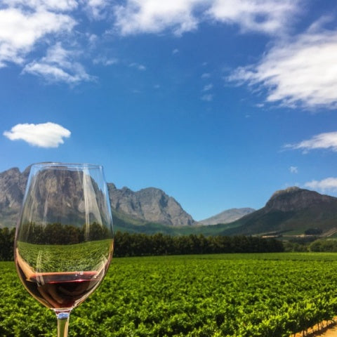 Wine Commentary | Pressing Matters for SA's Wine Industry