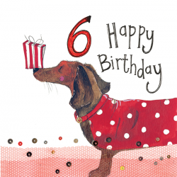 6th Birthday Dachshund Dog 6 Year Old