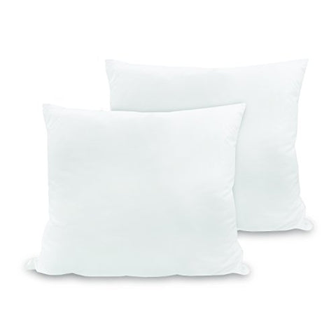 Biopedic Luxurious 28-By-28 Inch Euro Square Pillows,