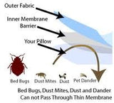 Premium Bed Bugs Pillow Protector A Set Of 2 Pillow Protectors - Lifetime Warranty (Queen (21X28))