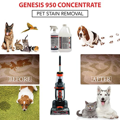 Genesis 950 2 5 Gallon - Professional Strength Concentrate, Pet Odor  Eliminator, Pet Stain Remover, Carpet Cleaner Shampoo & All Purpose Green
