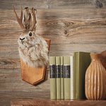 Jackalope Wall Mount - Rabbit With Antlers