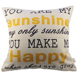 Hosl You Are My Sunshine Square Decorative Throw Pillow Case Cushion Cover 17.317.3 Inch (44Cm44Cm)