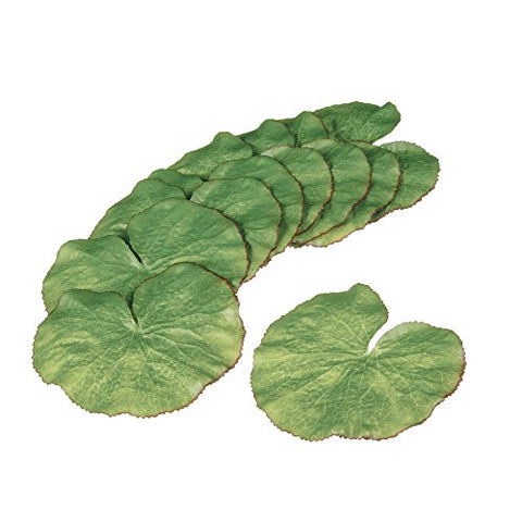 Set Of 10 Sullivans 5  Artificial Floatable Lily Pads