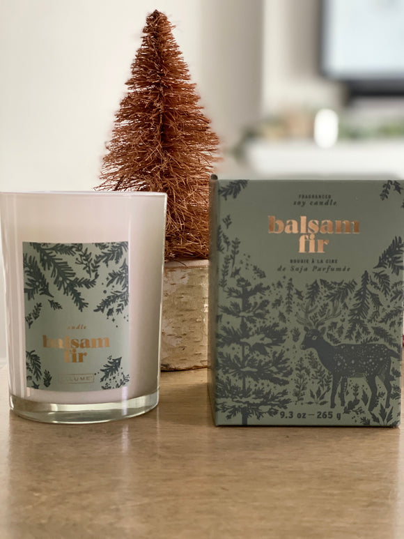Balsam & Fir Boxed Candle