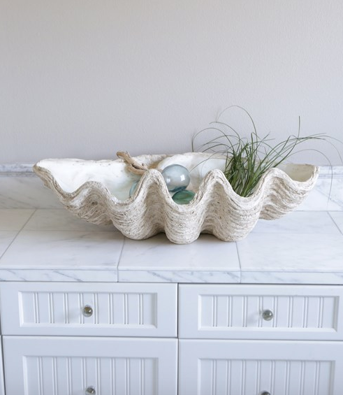 Large Magnesia Seashell Decor