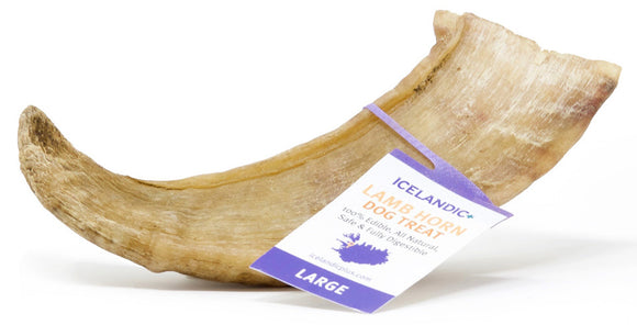 Icelandic Lamb Horn ~ Long Lasting & Packed With Vitamin