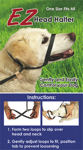 One Piece Halter & Leash Combo - ONE SIZE FITS ALL!