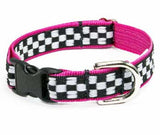 Speedway Buckle Dog Collar ~ Red or Blue