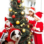 Hot Sale Santa Claus Pet Costume-Make Your Dog A Life of The Party This Christmas