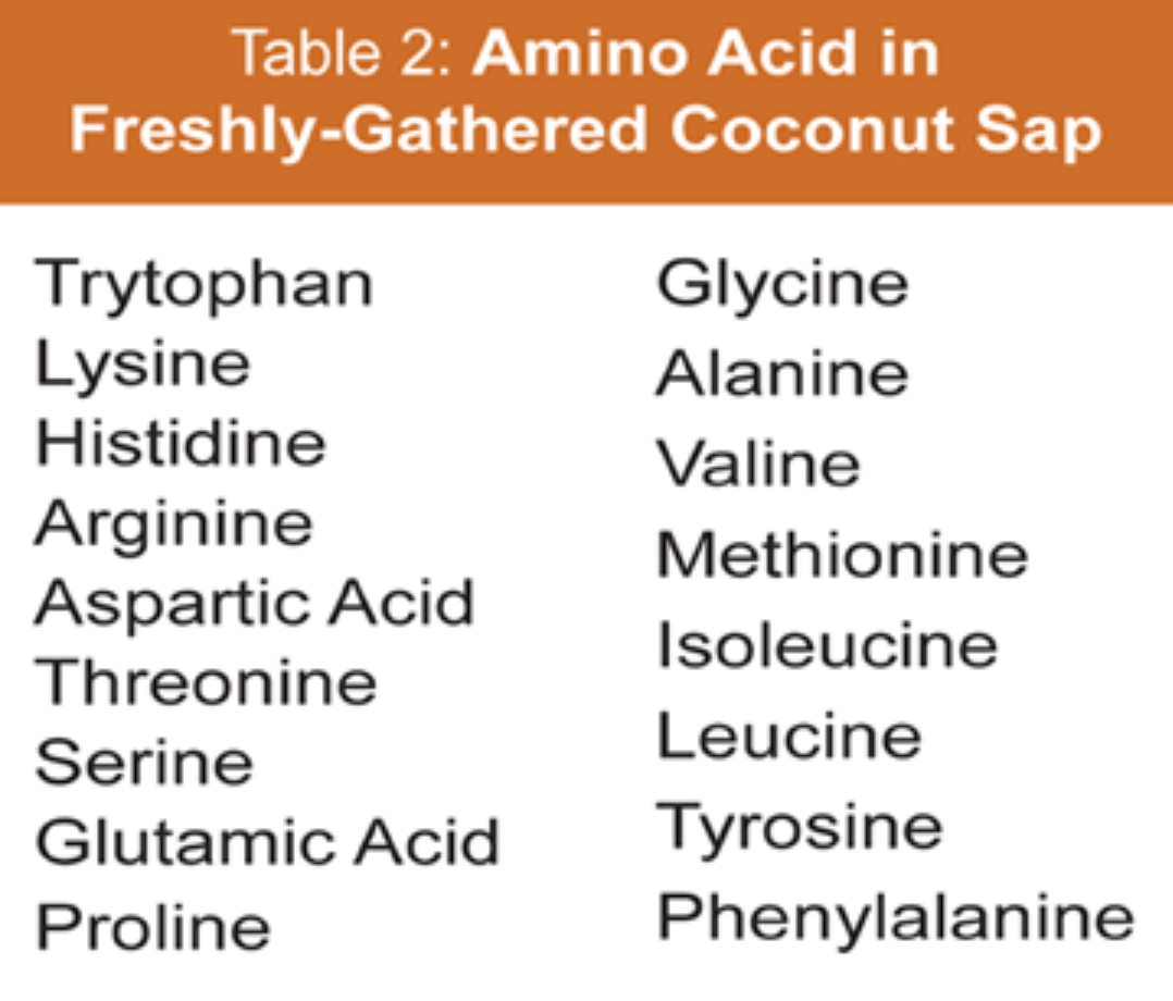 Amino Acids In Coconut Sap