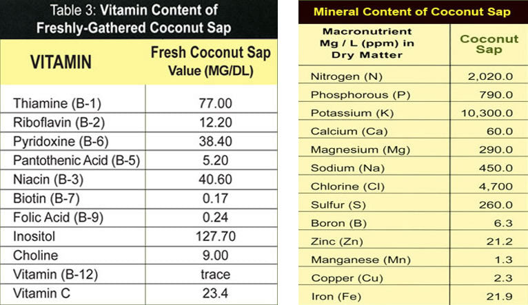 Vitamins and minerals in coconut sap