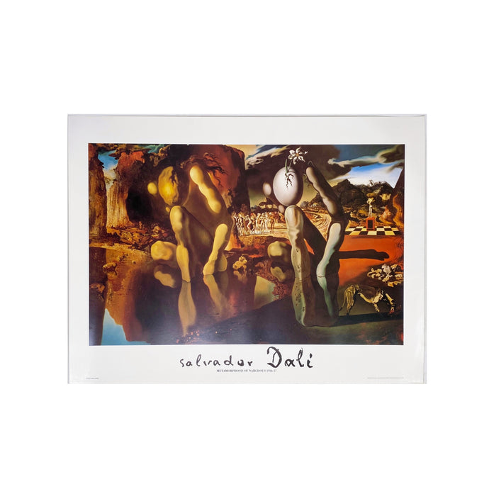 SALVADOR DALI - METAMORPHOSIS OF NARCISSUS FINE ART PRINT-BASEMENT SIX
