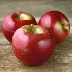 Spartan Apples