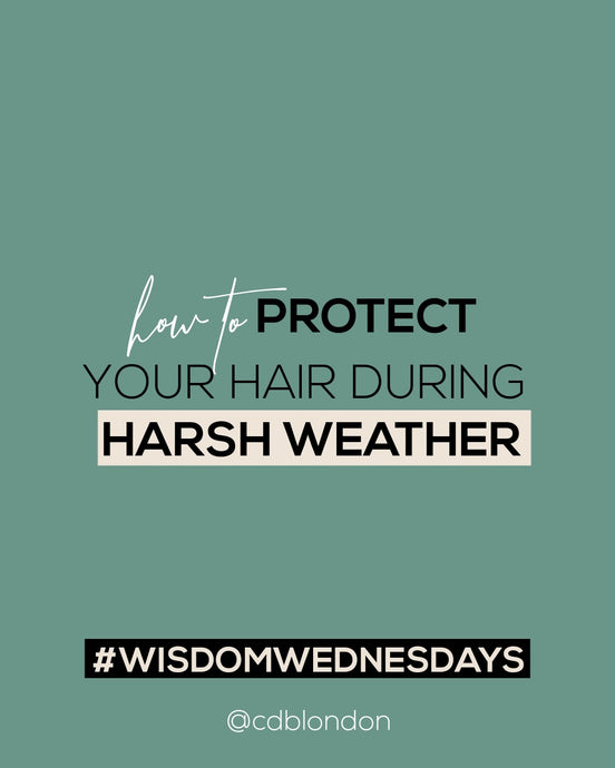 How to Protect Your Hair During Harsh Weather