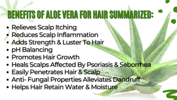 Benefits of Aloe Vera for Hair Summarized:
