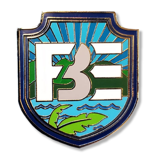 Original FBE Logo Pin