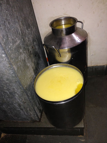 Containers are kept in a temperature controlled room until ghee is ready to be refilled into smaller containers for cooking or traditional medicinal purposes