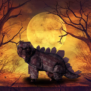 Stegosaurus Costume for Pets