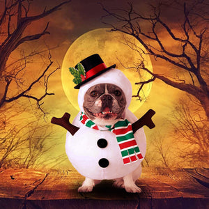 Snowman Dog Costume For Pets