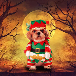 Elf Pup Costume For Pets