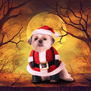 Santa Paws Costume For Pets