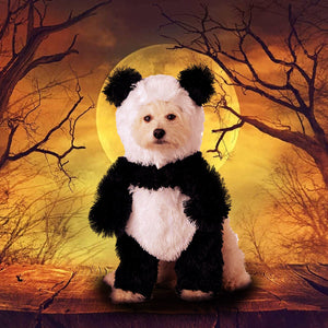 Panda Pooch Costume for Pets