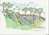 Schematic Conceptual Design Napa California I Maria White Landscape Architect