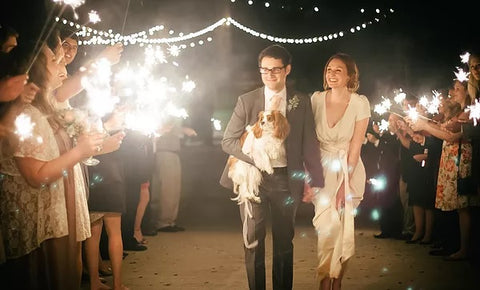 delaware-wedding-sparkler-laws