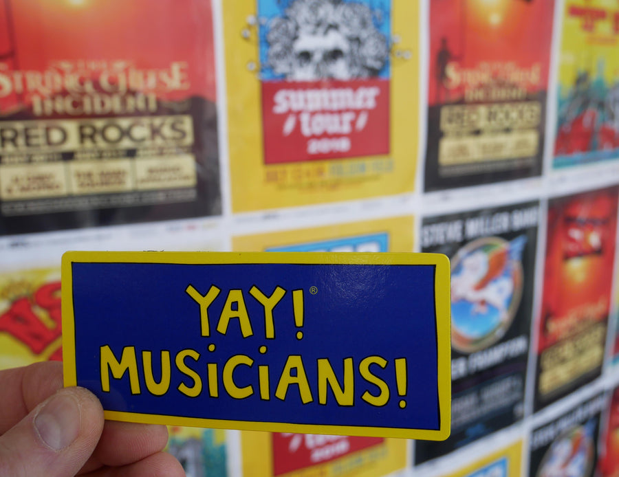 YAY! MUSICIANS! magnet