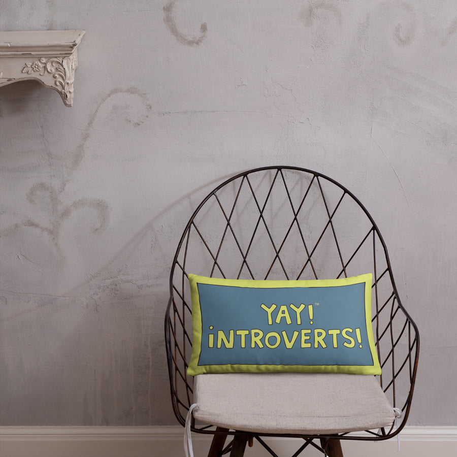 YAY! INTROVERTS!  Pillow