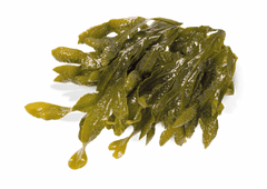Grahams Natural image of the ingredient seaweed