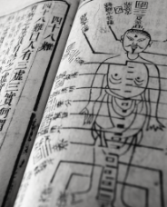 a book of acupressure technique