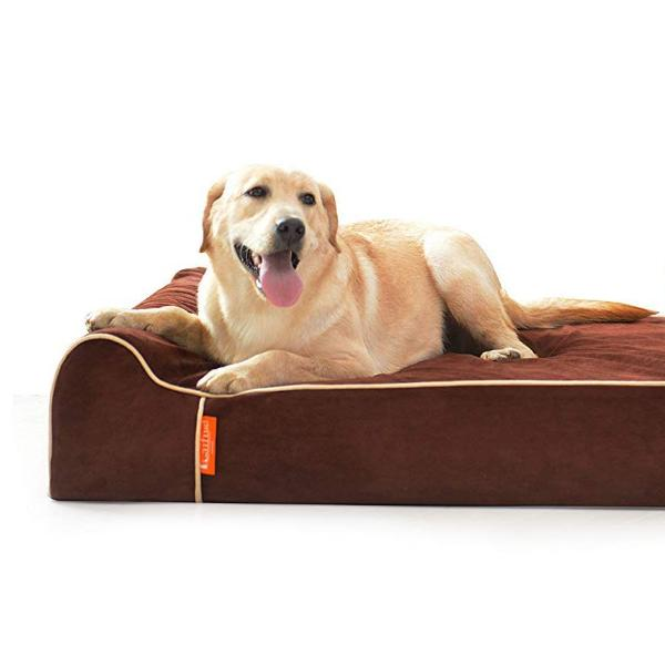Laifug Orthopedic Memory Foam Extra Large Dog Bed With Pillow & Durable Water Proof Liner & Removable Washable Cover