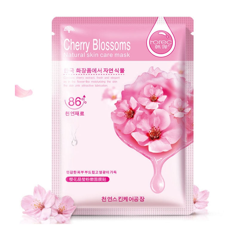 jw08 K Beauty HanChan Skin Care Plant Facial Mask Moisturizing Oil Control Whitening Face Masks