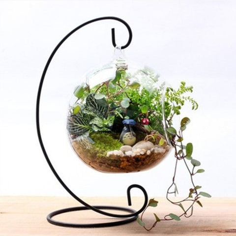 Hanging Glass Flowers Plant Vase Stand Holder