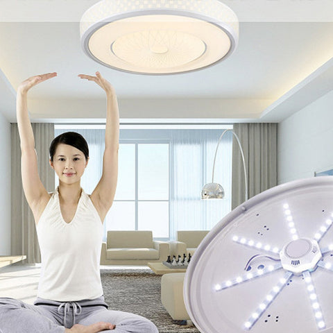 LED Ceiling  Octopus Lamp