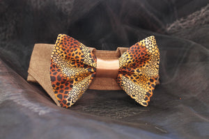 George - Dog Shirt Collar and Bow Tie