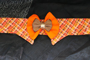 Baila - Dog Shirt Collar and Bow Tie