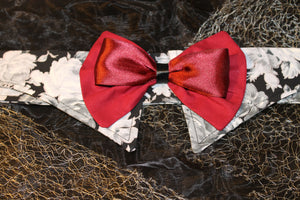 Sein -Shirt Collar and Bow Tie