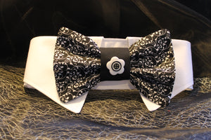 Dog Collar and Bow Tie