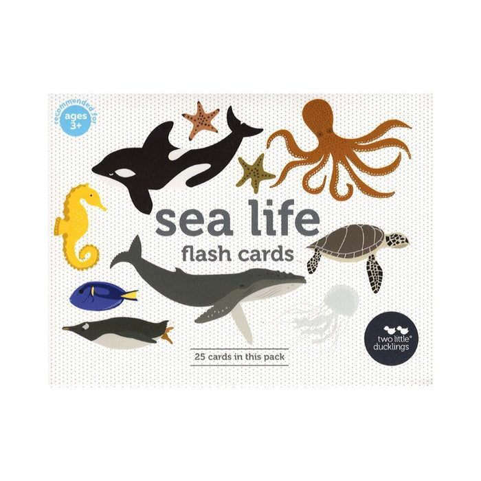 Flashcards Sealife