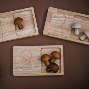 Jumbo Wooden Counting Trays