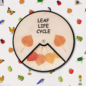 Learning Wheels - Nature Lifecycles