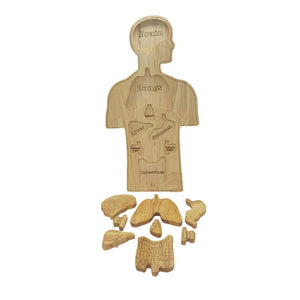 Wooden Anatomy Puzzle-Qtoys