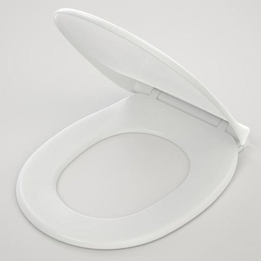 Caroma Trident Toilet Seat Online at the Blue Space - Replacement toilet seats
