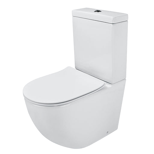 Gallaria Danza Back To Wall Rimless Toilet Suite with Thin Seat - The Blue Space