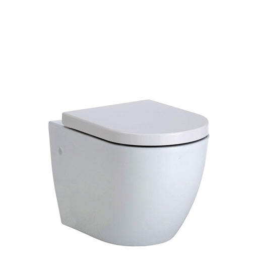 Fienza Koko Rimless Wall Hung Toilet Suite online at The Blue Space