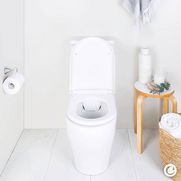 Caroma Luna Cleanflush Toilet Suite online at The Blue Space