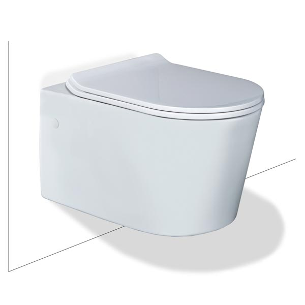 Seima Gyali Rimless Wall Hung InWall Toilet Suite